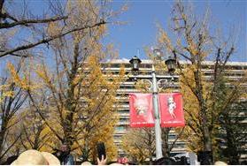 熊本県庁ワンピース色