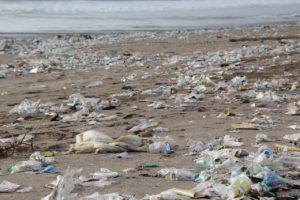 プラスチックゴミによる海洋汚染の深刻さ